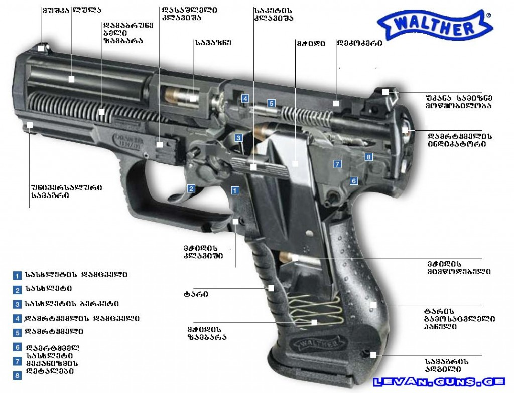 walther-1024x784